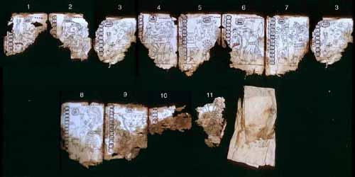 mayan document based essays